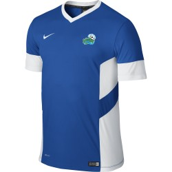 Maillot Nike Academy Adulte